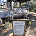 Photos: 箕輪城(高崎市)御前曲輪井戸