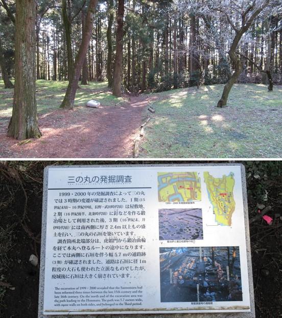 Photos: 箕輪城(高崎市)三の丸