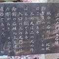 Photos: 箕輪城(高崎市)三の丸門跡
