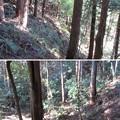 Photos: 箕輪城(高崎市)鍛冶曲輪