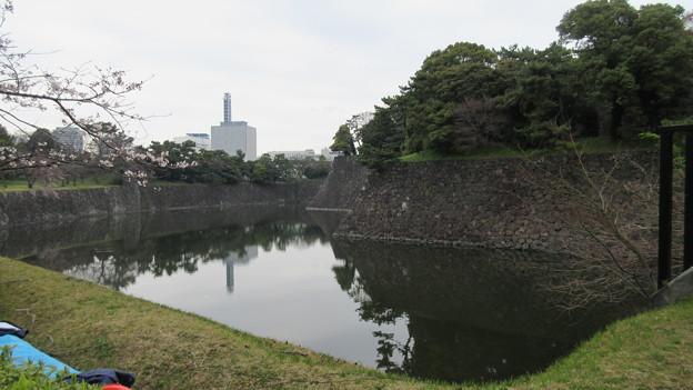 16.03.28.皇居乾通り(乾堀