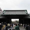 16.03.28.皇居乾通り(乾門