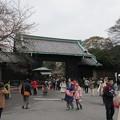 Photos: 16.03.28.皇居乾通り(乾門