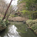 Photos: 16.03.28.六義園/柳沢松平家下屋敷(文京区本駒込)