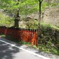 貴布禰総本宮 貴船神社(左京区)蛍岩