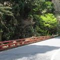 貴布禰総本宮 貴船神社(左京区)蛇ヶ谷橋
