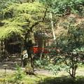 貴布禰総本宮 貴船神社(左京区)白岩社