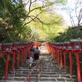 貴布禰総本宮 貴船神社(左京区)