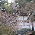 Photos: 16.04.11.鞍馬寺(左京区)霊宝殿