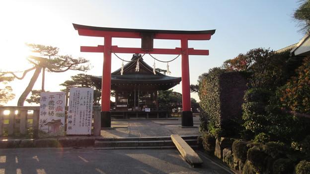 唐崎神社(大津市)
