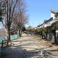 Photos: 倉賀野城(高崎市)本丸南西隅