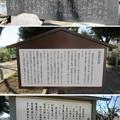 Photos: 倉賀野城(高崎市)┐(゜∀゜≡゜∀゜)┌