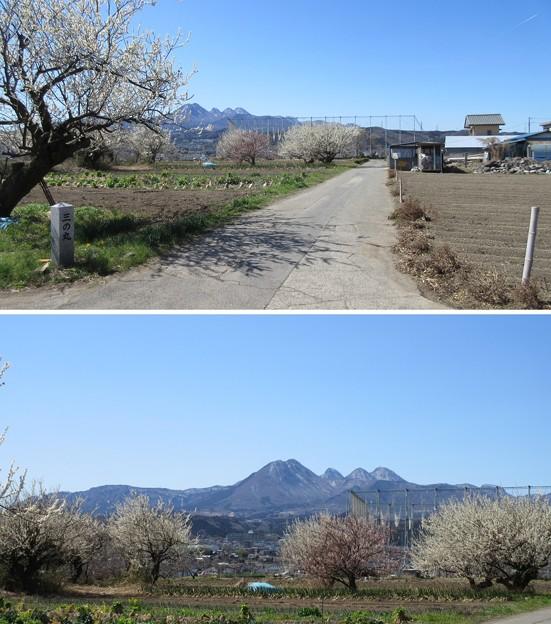 白井城(渋川市)三の丸