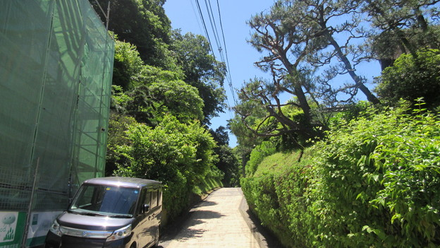 Photos: 亀ヶ谷坂切通(鎌倉市)