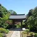 海蔵寺(鎌倉市)