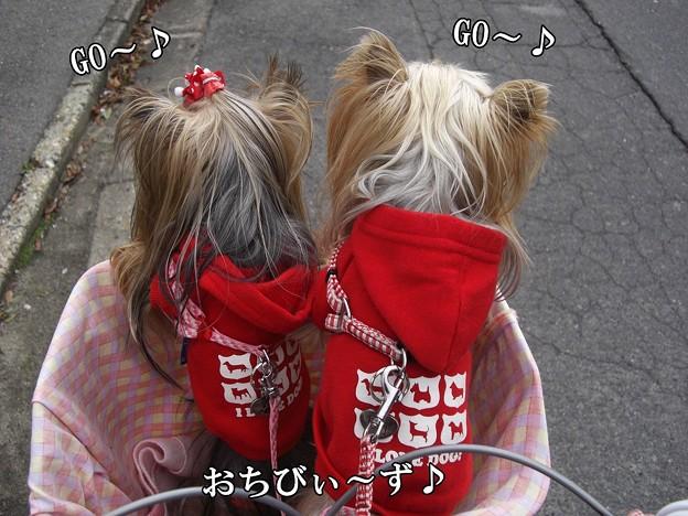 Photos: 2009.12