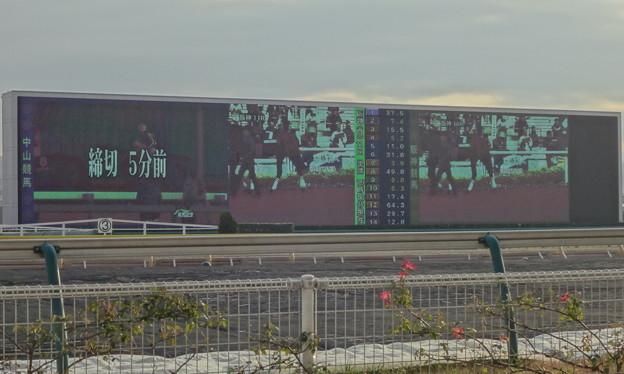 東京競馬場ターフビジョン(パークウインズ時)