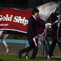 ゴールドシップ(有馬記念当日 引退式)