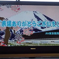 東京競馬場場内テレビ(東芝製 レグザ)