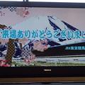 Photos: 東京競馬場場内テレビ(東芝製 レグザ)