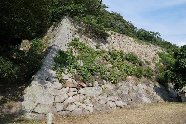 鳥取城 石垣