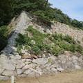 写真: 鳥取城 石垣