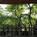 Photos: 金沢_14-09-23_0046