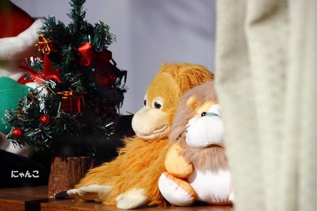 ~クリスマスにはね~