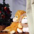 Photos: ~クリスマスにはね~