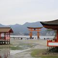 Photos: 厳島神社02