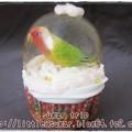 Photos: 文鳥のスノードーム・カップケーキ2-3