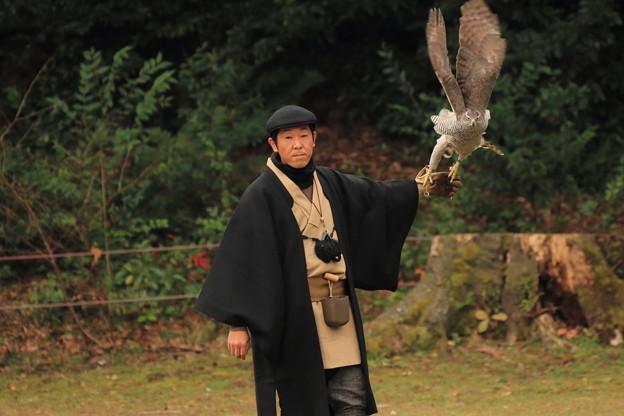 2015 諏訪流放鷹術
