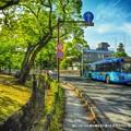 Photos: 緑いっぱいのお城の横を走り抜ける空色のバス。