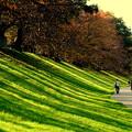 Photos: Green stripe