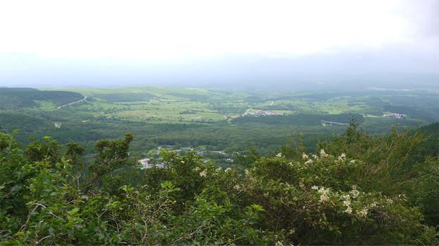 シェ・タニ瀬の本高原~店内からの景色