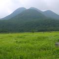 タデ原湿原の夏(1)
