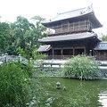 写真: 聖福寺(7)
