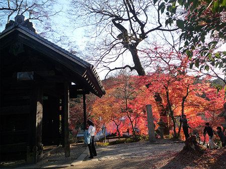 秋月~黒門の紅葉2009(1)