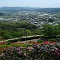 日輪寺(12)'頂上からの眺め