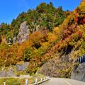 Photos: 白山白川郷ホワイトロード 3