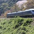 写真: にちりん787系