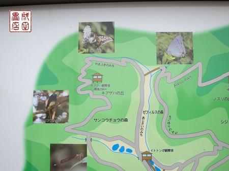 桐生自然観察の森04