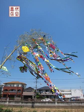 七夕祭09