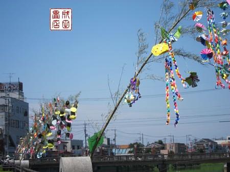 七夕祭10