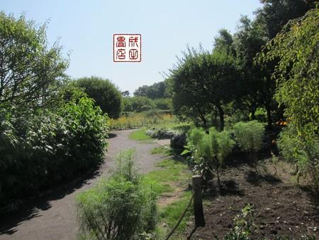 梅林公園04