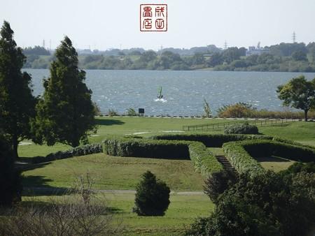 渡良瀬遊水地03