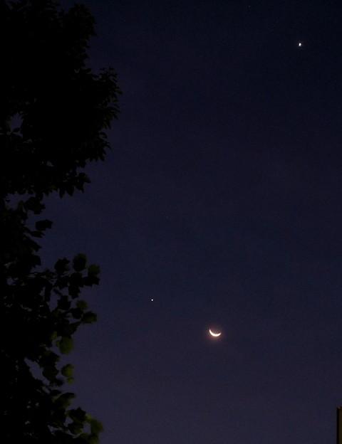 ~明け方の月~♪