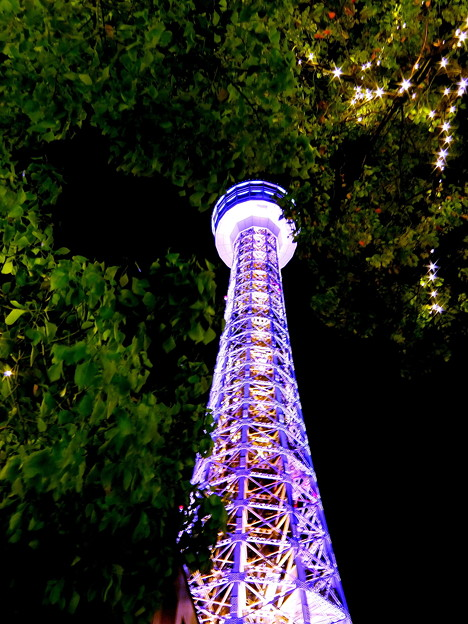 ~YOKOHAMA MARIN TOWER