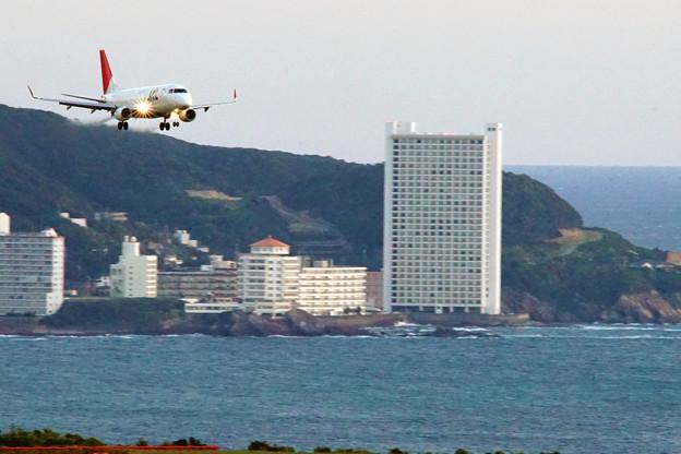 JAL219便