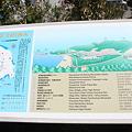 写真: IMG_6783神津島__天上山登山と島巡り